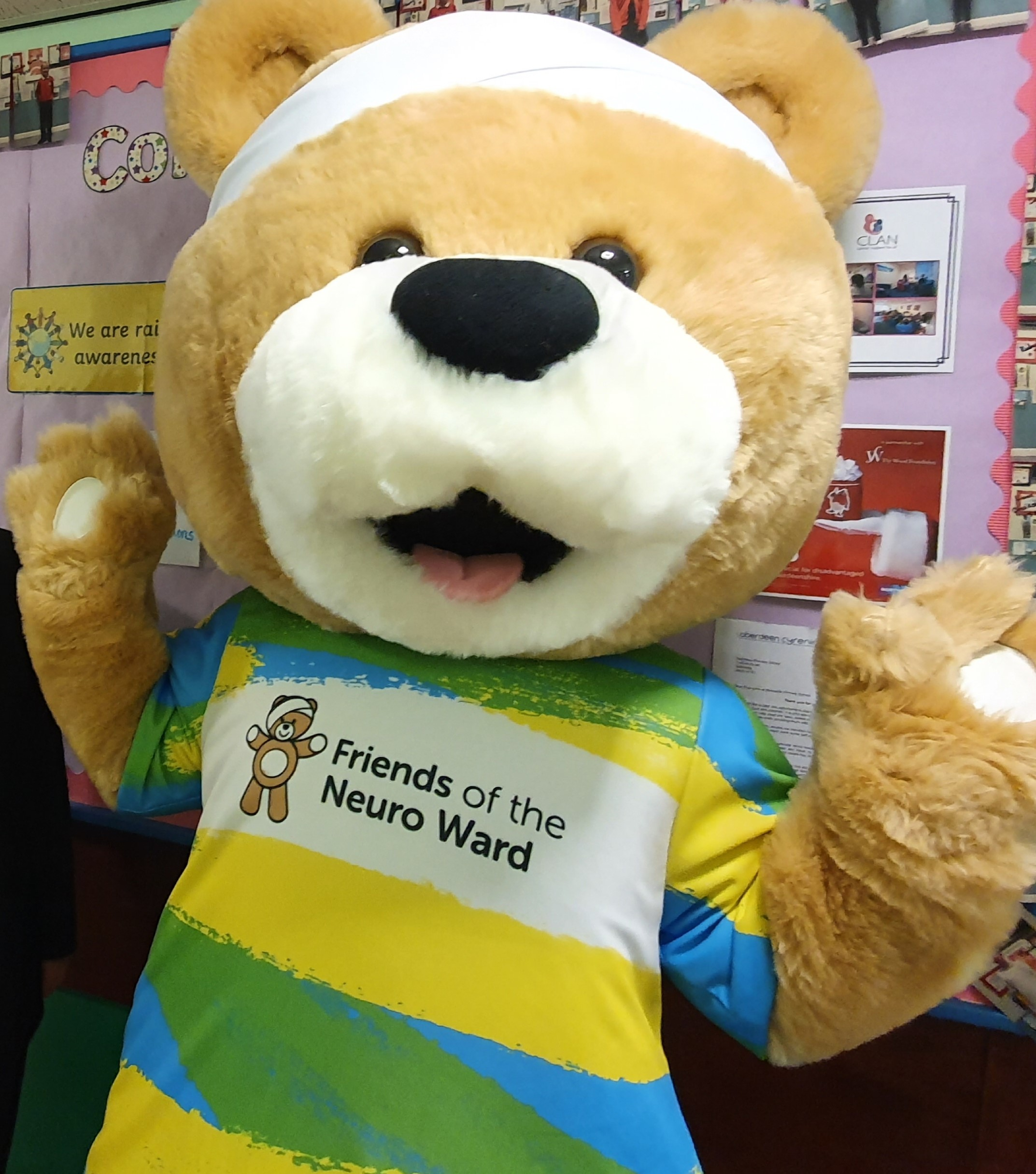 Meet Buddy: Winner of Name Our Bear competition revealed